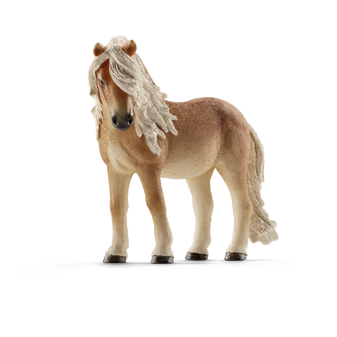Yegua poni islandesa