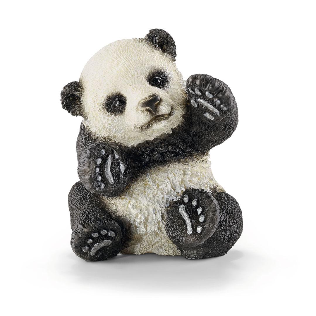 Cría de oso panda jugando