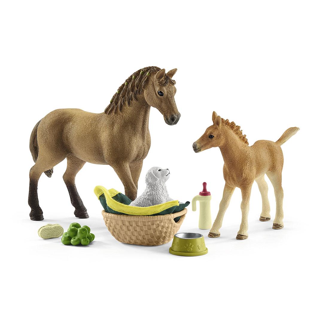 Set de cuidado de crías de Horse Club Sarah