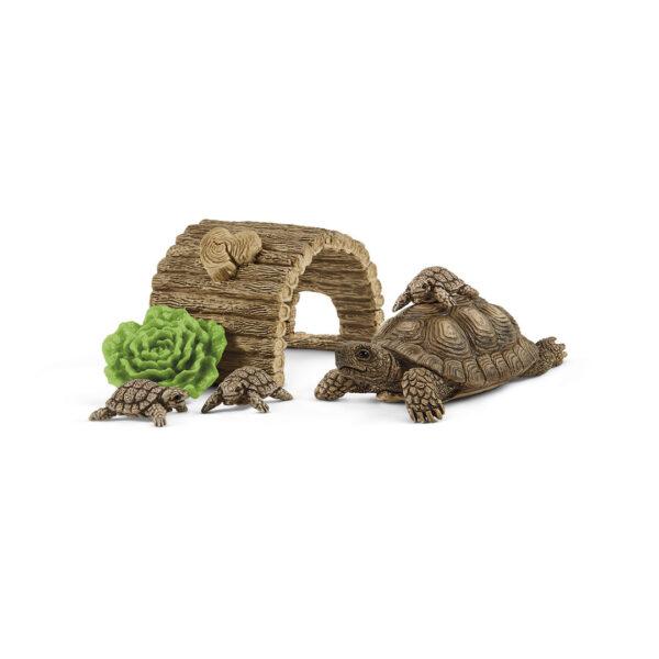 Casa para tortugas