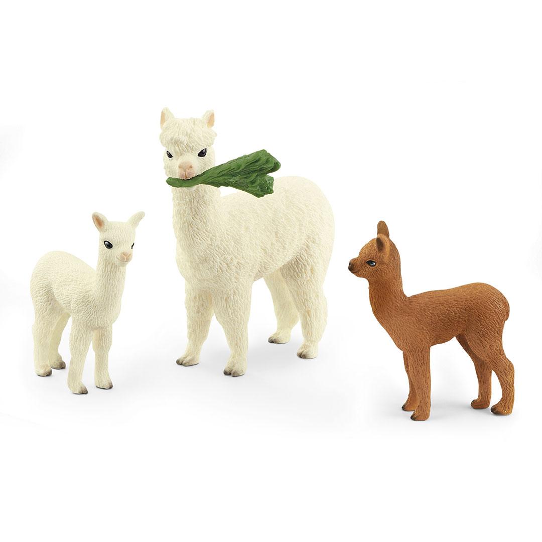 Familia de alpacas