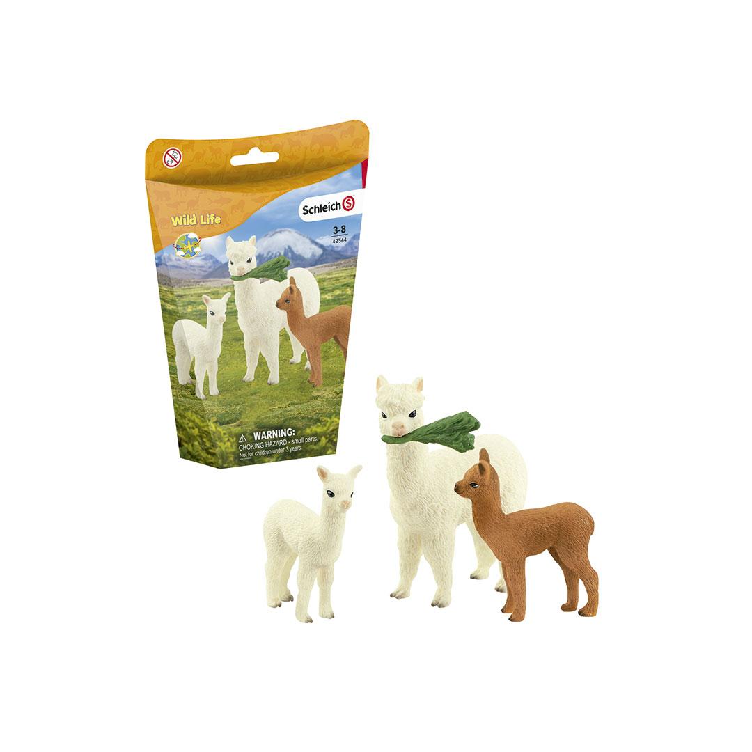 Familia de alpacas - 1